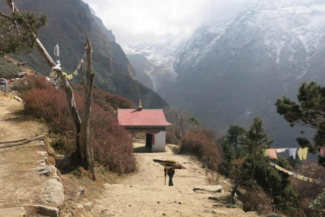 A young boy enters the village of Tengboche carrying building materials.